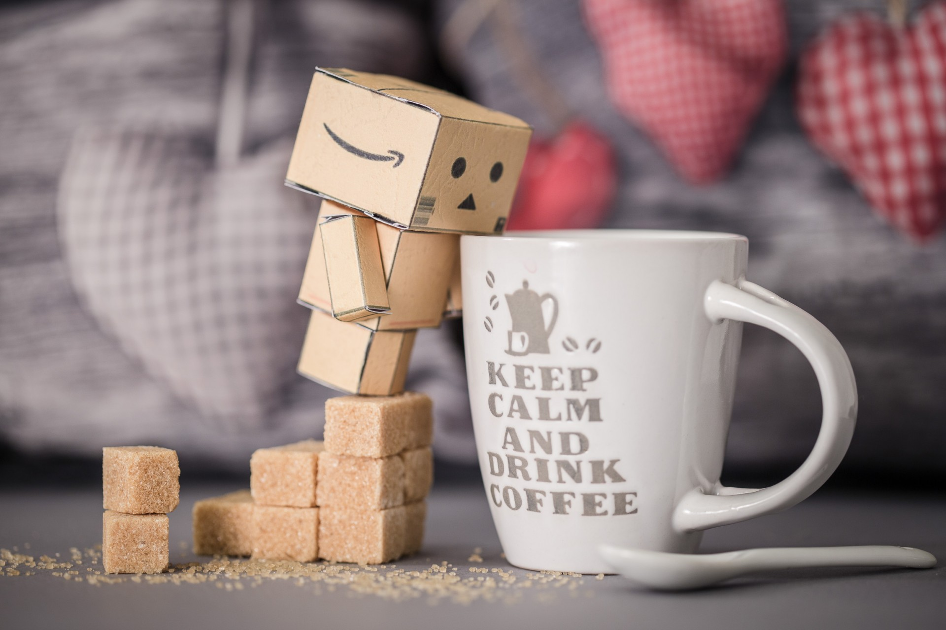 photo-danbo-tour-du-monde-noemie-vieillard1