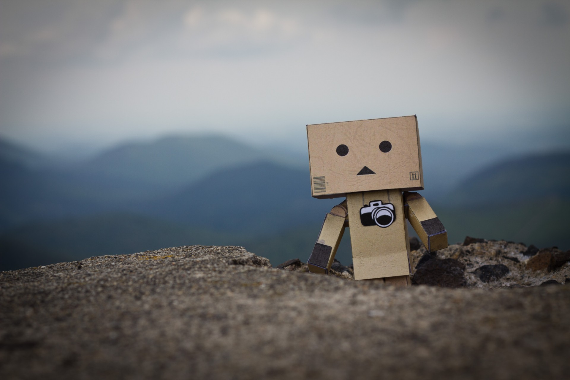 photo-danbo-tour-du-monde-noemie-vieillard3