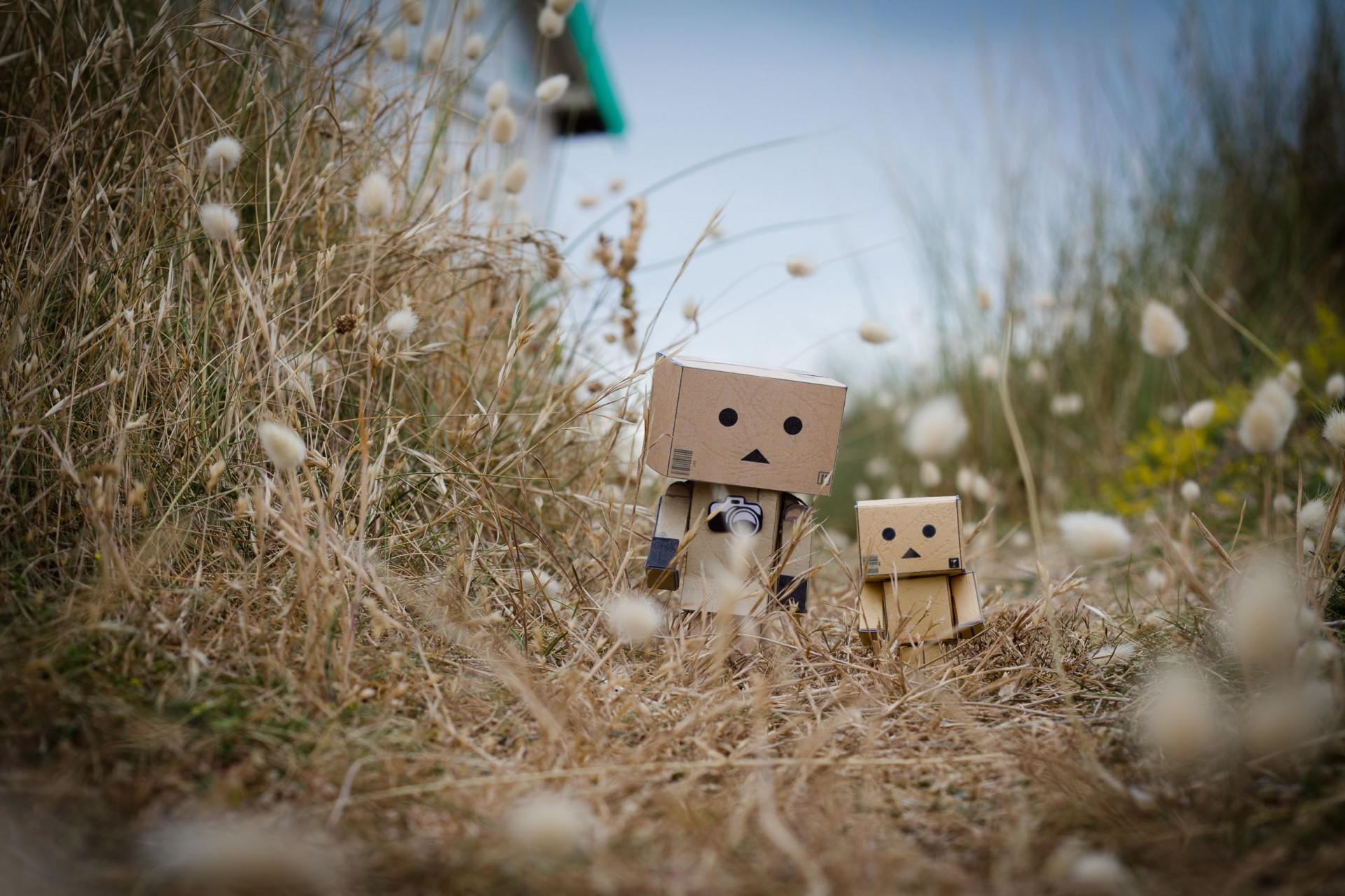 photo-danbo-tour-du-monde-noemie-vieillard6