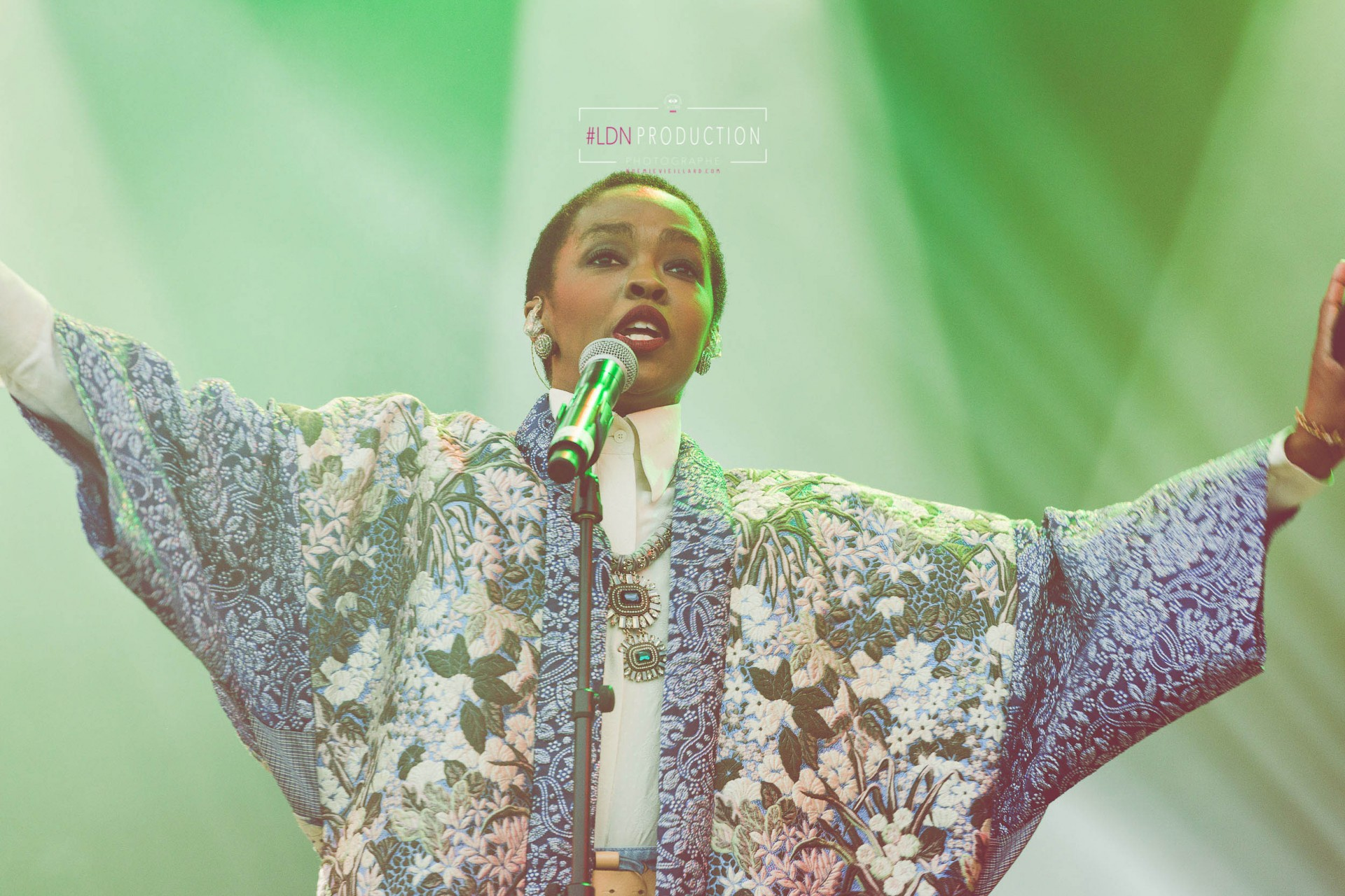 photo-ms-lauryn-hill-fugees-hip-hop-usa-soul-festival-papillons-de-nuit-normandie-noemie-vieillard-35